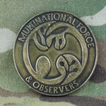 Multinational Force and Observers, Type 1