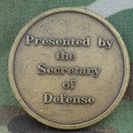 Secretary of Defense, Interim, Type 3