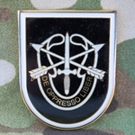1st Battalion, 5th Special Forces Group (Airborne), Type 4