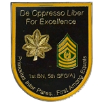 1st Battalion, 5th Special Forces Group (Airborne), Type 6