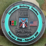 Task Force Gauntlet, 10th Mountain Division, Type 1