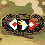 101st Airborne Division (Air Assault), AC of S, G-6, Type 3